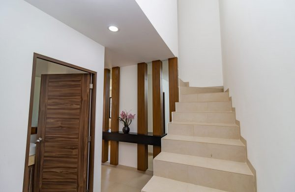 lyra-escalera-2